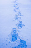 Footprints in Snow. A background of footprints in blue snow Royalty Free Stock Photo