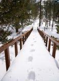 Footprints on snow Royalty Free Stock Photo