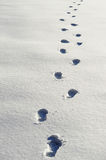 Footprints on snow Royalty Free Stock Images