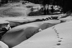 Footprints in the snow - bw Stock Images