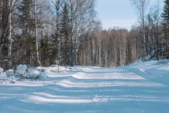 Footprints in the snow from the car. The road to the forest. Winter landscape. Winter in Siberia. Winter road. Trees in the snow stock photography