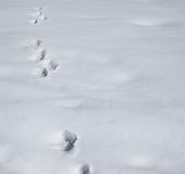 Footprints in a snow composition background. Footprints in a snow copyspace composition winter background Royalty Free Stock Photo