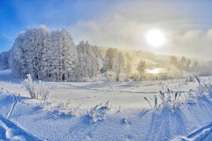 Footprints in the Snow Lake. Stock Photos