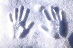 Footprints in the snow Royalty Free Stock Image