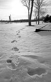 Footprints in snow in park Stock Photo