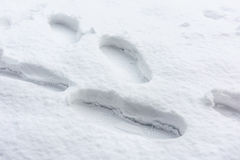 Footprints on snow Royalty Free Stock Photography