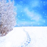 Footprints on Snow in Winter Landscape Christmas Theme royalty free stock photos