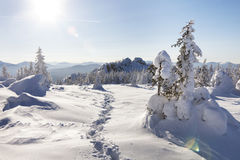 Footprints in the snow. Winter landscape. Ural, Zyuratkul Royalty Free Stock Images