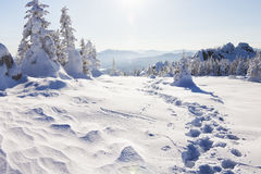 Footprints in the snow. Winter landscape. Ural, Zyuratkul Royalty Free Stock Image