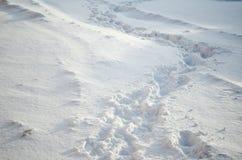 Footprints on snowdrift winter time Stock Photo