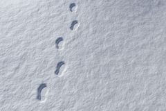Footprints in snowy landscape Stock Photography