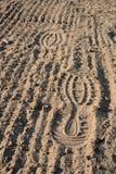 Footprints on soil. Footprints on loosened soil - closeup Stock Photos