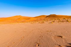 Footprints on Sossusvlei Sand Dunes, Namib Naukluft National Park, Namib desert, scenic travel destination in Namibia, Africa. Royalty Free Stock Photo