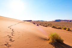 Footprints on Sossusvlei Sand Dunes, Namib Naukluft National Park, Namib desert, scenic travel destination in Namibia, Africa. Footprints on Sossusvlei Sand Stock Photo