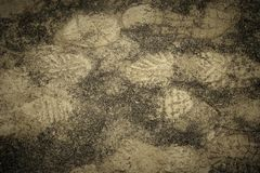 Footprints of sport shoes or hiking boots in the mud and sand on the ground. Top view. royalty free stock photography