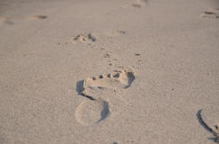 Footprints. Stock Photos