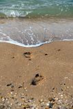 Footprints on the summer beach Royalty Free Stock Photography