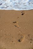 Footprints on the summer beach Stock Photos