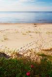 Footprints on a sunny, empty beach. Royalty Free Stock Image