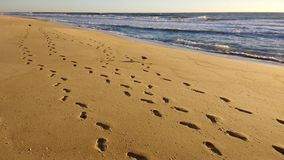 Footprints at sunrise. Footprints on the beach near the ocean at sunrise in Ocean City, Maryland Royalty Free Stock Photos