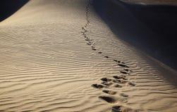 Footprints at Sunset Royalty Free Stock Photos