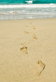 Footprints to the sea Stock Photography