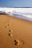 Footprints towards the water. Footprints on the beach sand, leading away from the viewer into the sea Stock Photos