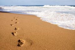 Footprints towards the water. Footprints on the beach sand, leading away from the viewer into the sea Royalty Free Stock Photo
