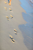 Footprints on tropical beach Royalty Free Stock Photo