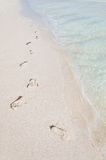 Footprints on a tropical beach Stock Photo