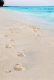 Footprints in tropical beach Royalty Free Stock Photography