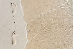 Footprints on tropical beach Royalty Free Stock Photography