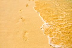 Footprints on the tropical beach Stock Photography