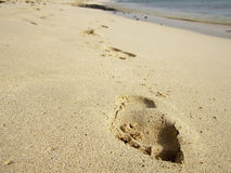 Footprints on tropical beach with white sand, Cape Verde Stock Photos