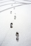 Footprints and tyre on snow Stock Image