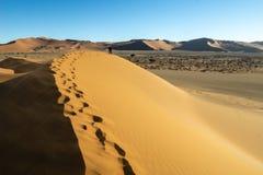 Footprints in undulating ridge lines of dunes of Hidden Vlei, So. Footprints in undulating ridge lines of orange and red color dunes of Hidden Vlei, Sossusvlie stock image
