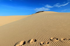 Footprints in the Vietnam sand dune with wind pattern and clear blue sky Royalty Free Stock Photography