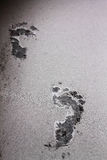 Footprints on volcanic ash eruption of Mount kelud Stock Photo