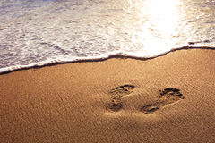 Footprints. Walk on the beach at sunset Royalty Free Stock Photo