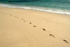 Footprints, walking in the beach Stock Images