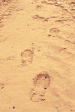 Footprints of a wanderer on the yellow sand. Someone walked across the sand and left their marks Royalty Free Stock Photos