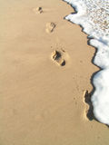 Footprints in the water. Footprints on the sand in the water Stock Photography