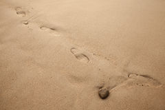 Footprints on wet coastal sand Royalty Free Stock Image