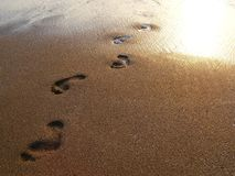Footprints in the wet sand. Some footprints on the wet sand of the sea into the sunset Stock Images