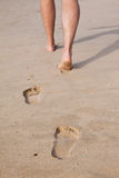 Footprints in wet sand Stock Images