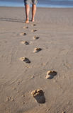 Footprints in wet sand Stock Photography