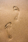 Footprints in wet sand Royalty Free Stock Photos