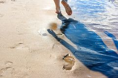 Footprints in the wet sand of the beach. On sunny summer day Royalty Free Stock Images