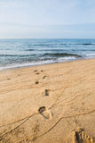 Footprints in wet sand beach Stock Photo