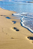 Footprints on the wet sand Stock Photography